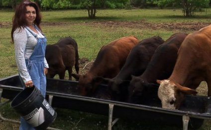 Texas Couple Gives Up Cattle