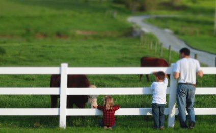 Myer Springdell Farm
