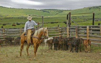 Texas ranches Gallery