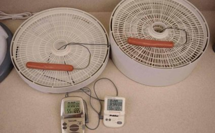 The Best Dehydrator for Making
