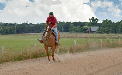 Horse Ranches in Texas