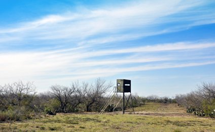 South Texas Hunting Ranches