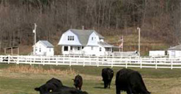 Eco-Vacation at Willow Creek Ranch, Coon Valley, WI