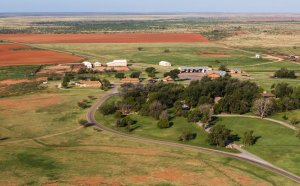 Largest cattle Ranch in Texas