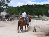 Guest Ranches In Texas